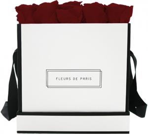 Infinity Collection Burgundy Large white - square