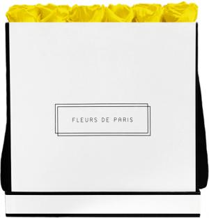 Infinity Collection Sunny Yellow Luxe white - square