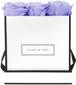 Infinity Collection Cool Lavender Medium white - square