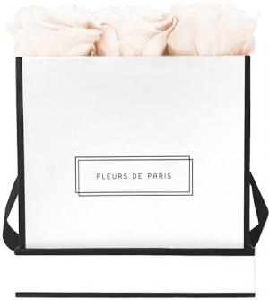 Infinity Collection Pastelle Peach Medium white - square