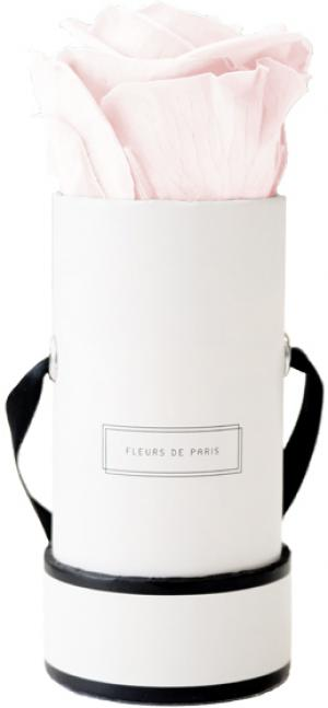Infinity Collection Pastelle Pink Mini white - round