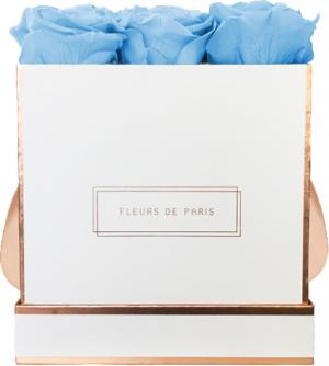 The Rosé Gold Collection Baby Blue Medium white - square