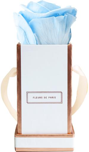 The Rosé Gold Collection Baby Blue Mini white - square
