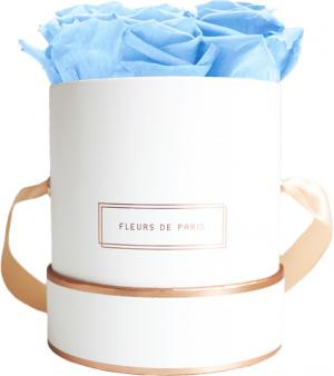 The Rosé Gold Collection Baby Blue Small white - round