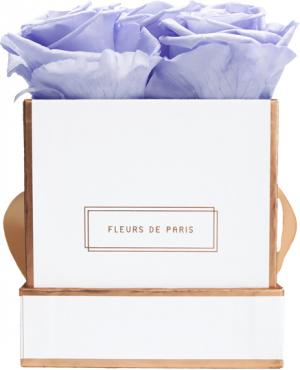 The Rosé Gold Collection Cool Lavender Small white - square