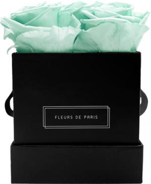 Infinity Collection Minty Green Small black - square